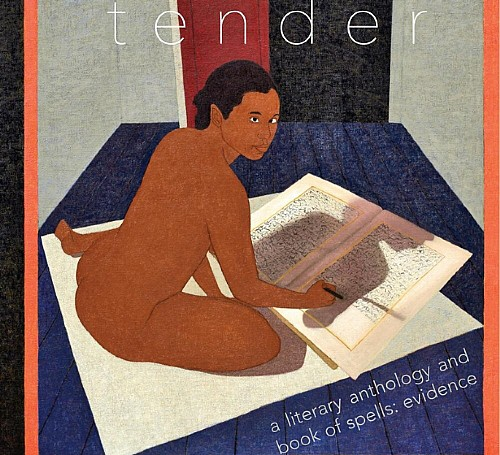 Social/Justice Series—TENDER a literary anthology & book of spells: evidence